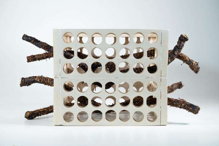 http://ananorogrando.com.br/files/gimgs/th-233_Escultura23-3.jpg