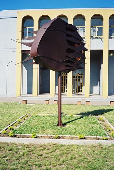 http://ananorogrando.com.br/files/gimgs/th-268_01-Vento-Norte-2(03).jpg